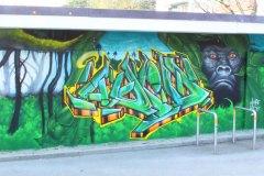 jungle-favre-2
